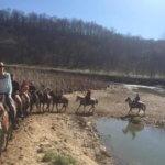 Salt Creek Horse Ranch