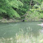 Whitewater River & TAIL WATER