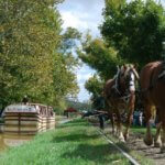 Horse Drawn Canal Boat