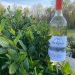 Backroads Vineyard